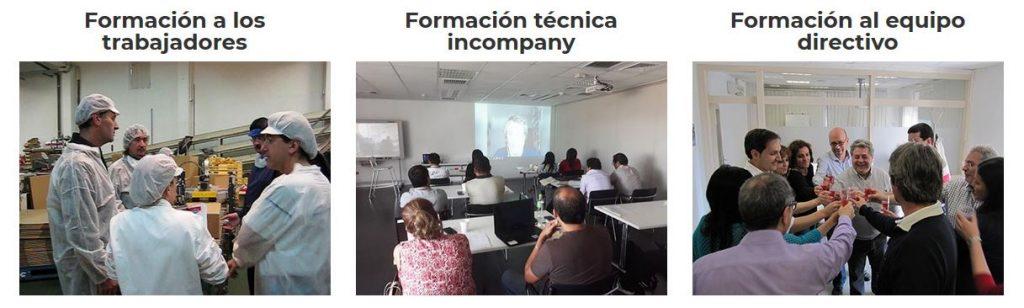 programas de ergonomia para empresas