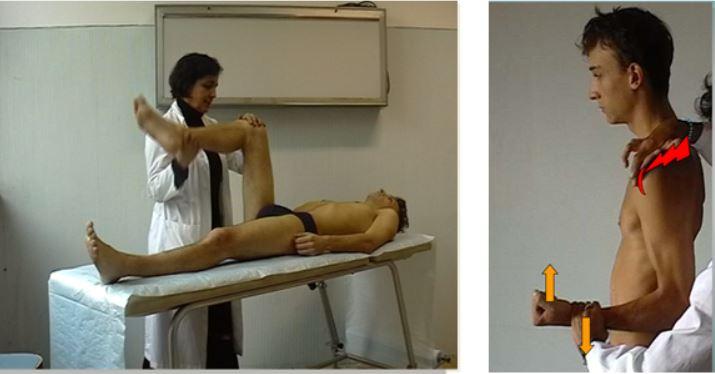 vigilancia medica trastornos musculoesqueleticos